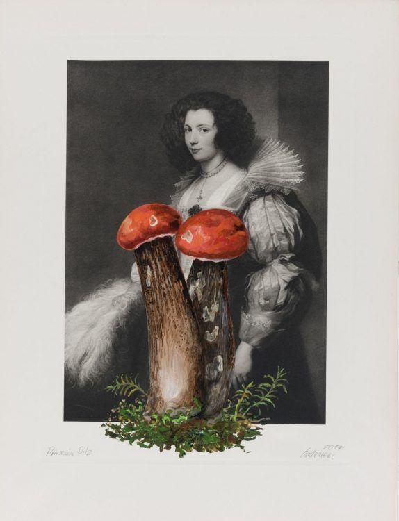 Prinzessin Pilz Acryl auf Heliogravüre 37,5cm x 25cm